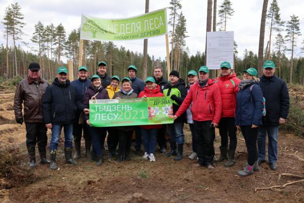 Республиканская добровольная акция «Неделя леса», приуроченная к Году народного единства